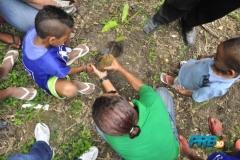 prb-verde-rj-comemora-dia-mundial-do-meio-mbiente-05-06-2012 (17)