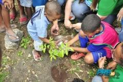 prb-verde-rj-comemora-dia-mundial-do-meio-mbiente-05-06-2012 (18)