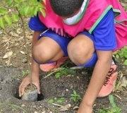 prb-verde-rj-comemora-dia-mundial-do-meio-mbiente-05-06-2012 (19)