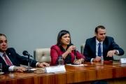Relançamento da Frente Parlamentar Contra o Abuso e a Exploração Sexual de Crianças e Adolescentes-69