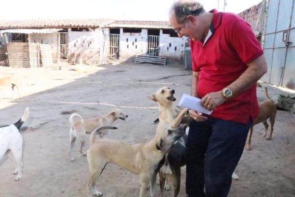 Arimateia realiza eventos em defesa dos direitos dos animais