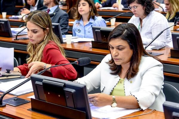 Maria Rosas apresenta relatoria que institui Política Nacional de Voluntariado