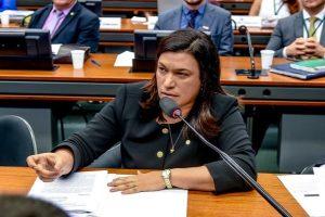 Aprovado relatório sobre isenção fiscal para pessoas com deficiência