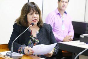 Sancionado projeto que prevê programa contra depressão pós-parto em BH