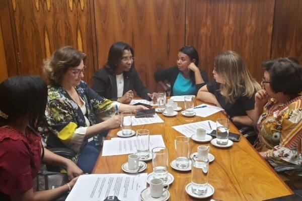 Conselho do Mulheres Republicanas se reúne para elaborar estratégias para 2020