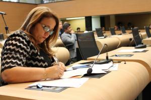 Professora Ana Lúcia apresenta balanço das atividades legislativas de 2017