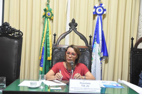 """Tia Ju quer """"observatório"""" na Alerj para acompanhar ações da Intervenção Militar no RJ"""