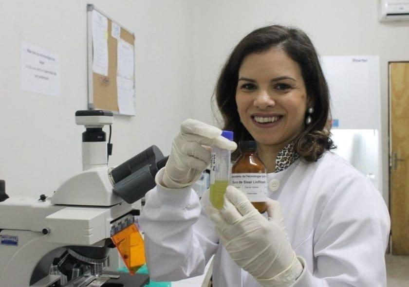 TPM: pesquisadora cria inseticida que mata mosquito da dengue